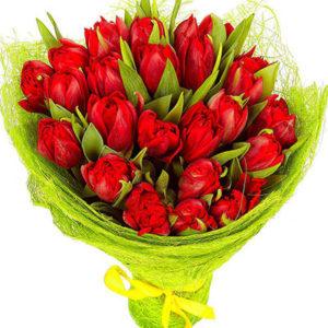"""замовити Букет """"25 червоних тюльпанів"""""""
