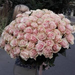 """замовити 101 троянда """"Здивування"""""""